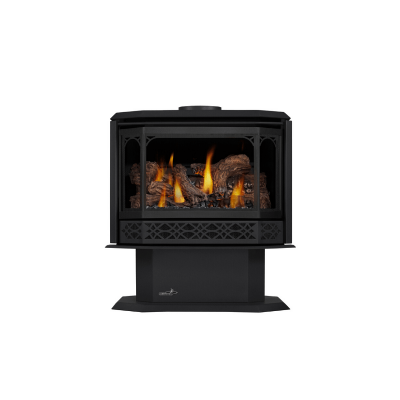CDVS500 Direct Vent Free Standing Stove